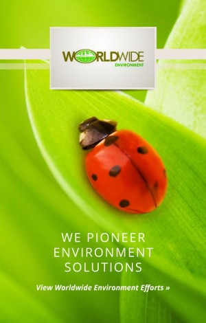whb-business-overview-environment